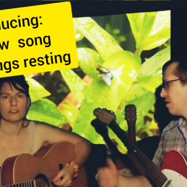 New song about bugs resting & Behind the Binge